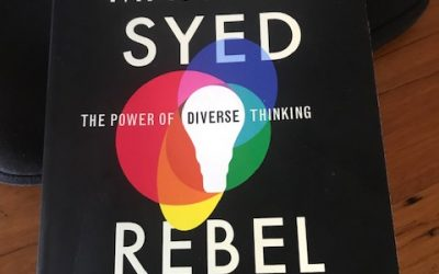 A review of Rebel Ideas